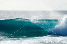 16012906_Breaking_wave_at_reef_in_Sal_Cape_Verde_Ponta_Preta