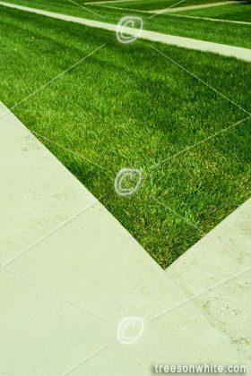 Landscape Architecture Details.