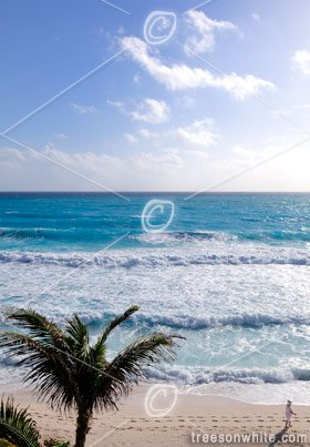 Caribbean Sea White Sand Beach at Cancun.
